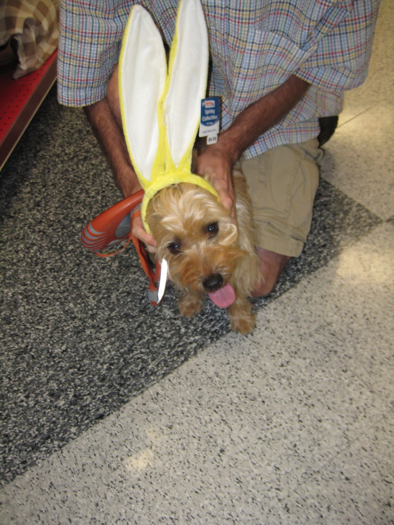 Junie loves Easter.  And probably hates me for doing this to her.
