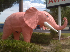 Pink elephant herds in Vegas.