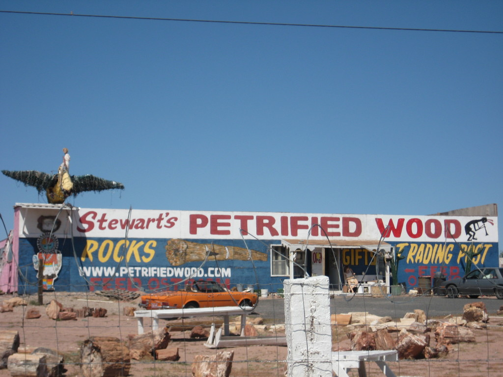 Petrified Wood Stores.